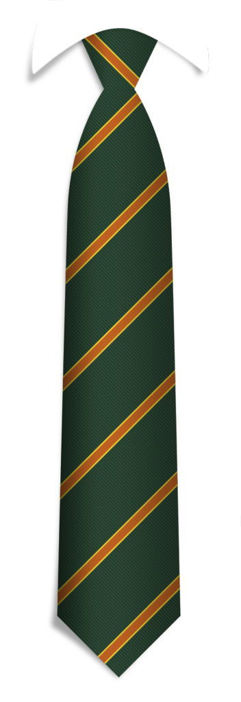 Custom Necktie Pattern Ties with Logo